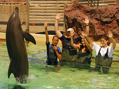 Marineland Antibes - Play with the Dolphins