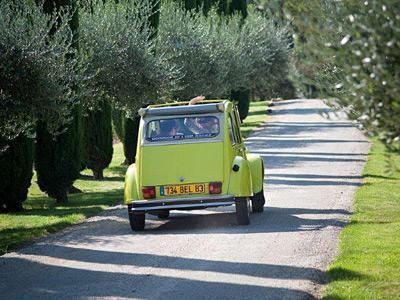 Rally with Treasure Hunt in Provence